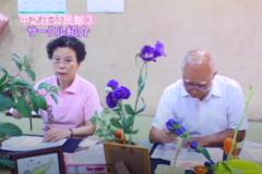 公民館だより:中之庄公民館 第3週「ハッスル!サークル紹介vol.2」