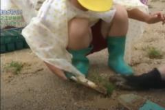 市民Dが行く! 「川之江幼稚園 みどりの芝生に」