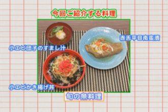 おしかけクッキング vol.9「旬の魚料理」