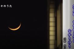 折々のうた「俳句 寒月」