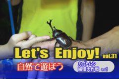 Let's enjoy! vol.31「カブトムシ捕獲大作戦その1」