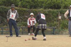 イカコレ!「ゲートボール四国中央クラブ」