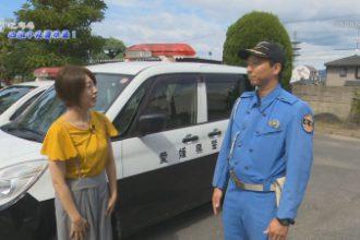 こちら四国中央警察署!「警察車両の種類」