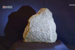 愛石図鑑  vol.5「角閃岩(かくせんがん)・点紋角閃岩(てんもんかくせんがん)」