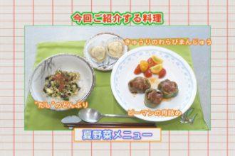 おしかけクッキング vol.21「夏野菜メニュー」