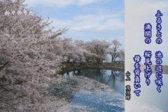 折々のうた「短歌 桜」