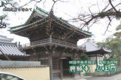 地域遺産:興願寺 仁王門