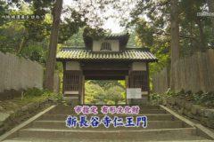 地域遺産:新長谷寺仁王門
