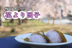 桜百景 花より団子