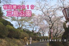 桜百景 三島公園