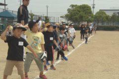 野球の楽しさ面白さを伝える ヤキュウフェス開催
