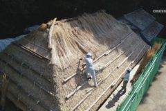 国指定重要文化財 真鍋家住宅 茅葺葺き替え工事
