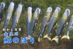 街かど百景:金生川 鮎のぼり