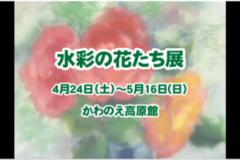 水彩の花たち展