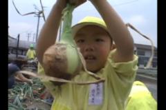 元気いっぱい 「中之庄幼稚園 ジャガイモ、タマネギ収穫編」