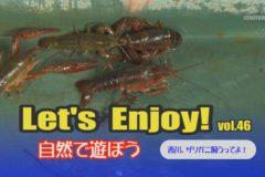 Let's Enjoy! vol.46 西川、ザリガニ飼うってよ!