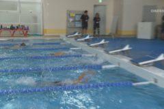 オリンピアンによる水泳教室