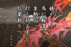 花ごよみ もみじ【作者未詳】