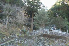 地域遺産:山城神社の大杉