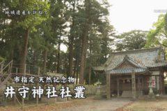 井守神社社叢