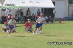 12.やまじ風注意報(3年生) 2020年度松柏小学校秋季大運動会