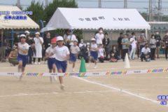 2.徒競走(2年・4年) 2020年度中曽根小学校秋季大運動会