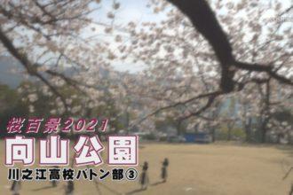 桜百景2021 向山公園-川之江高校バトン部③-