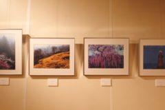 霧の森ギャラリー 瀬戸の虹写真展