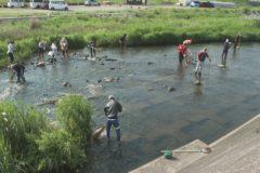 銅山川鮎釣りクラブ 鮎の放流準備 金生川清掃