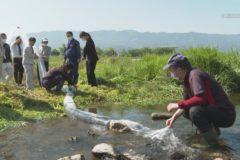 銅山川鮎釣りクラブ 金生川で稚鮎を放流