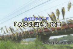 イベぽけ:金生川ラバーズ「あゆのぼり」設置