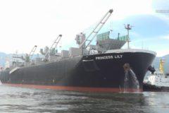 大王海運 チップ船新造