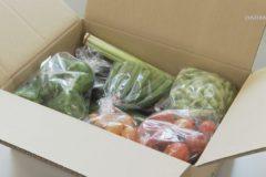 地元野菜宅配サービス「もぎたてボックス」