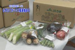 野菜宅配サービス もぎたてボックス配達開始