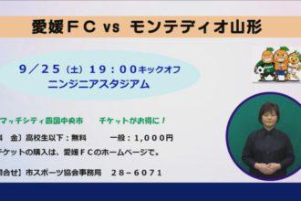 愛媛FC対モンテディオ山形 マッチシティ四国中央市